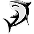 Раскраски Акула