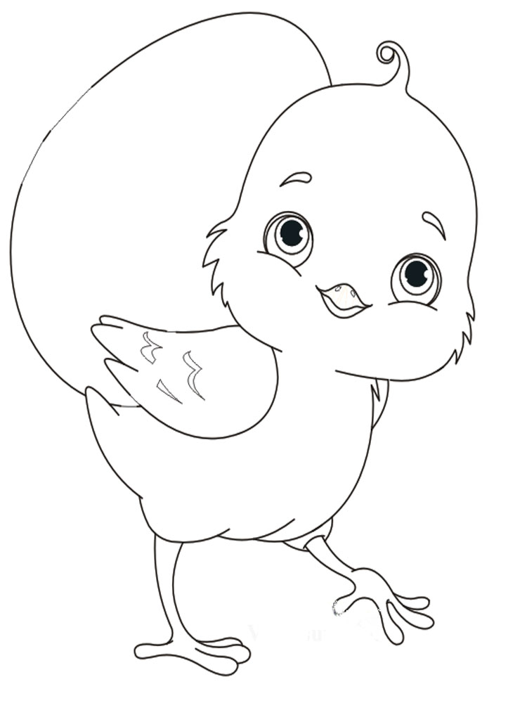 Фото раскраска цыпленок для детей