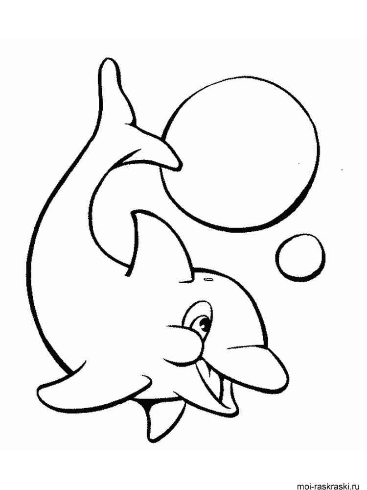 Раскраски дельфины распечатать