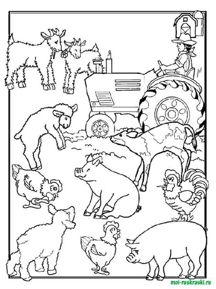 раскраски домашние животные скачать и распечатать раскраски