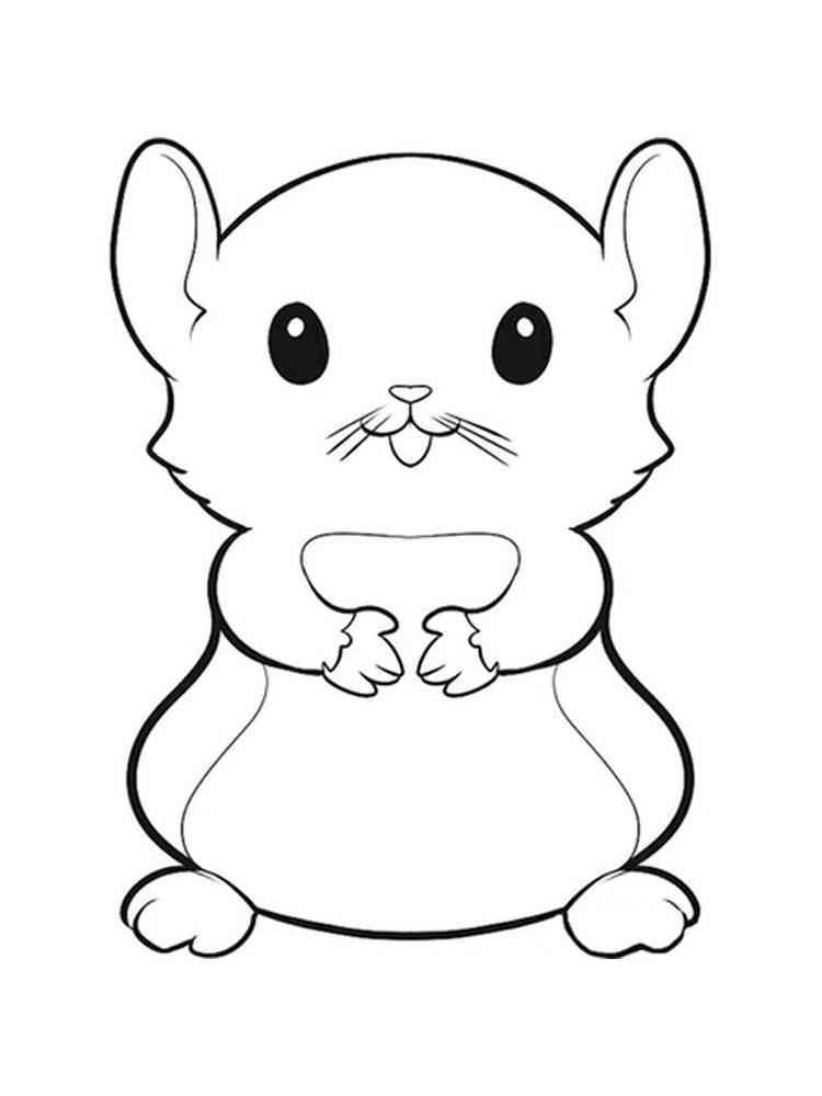 Картинки для раскраски хомячок