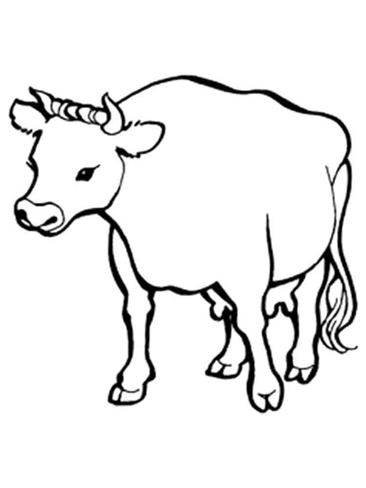 Раскраски Корова для детей. Скачать и распечатать ...