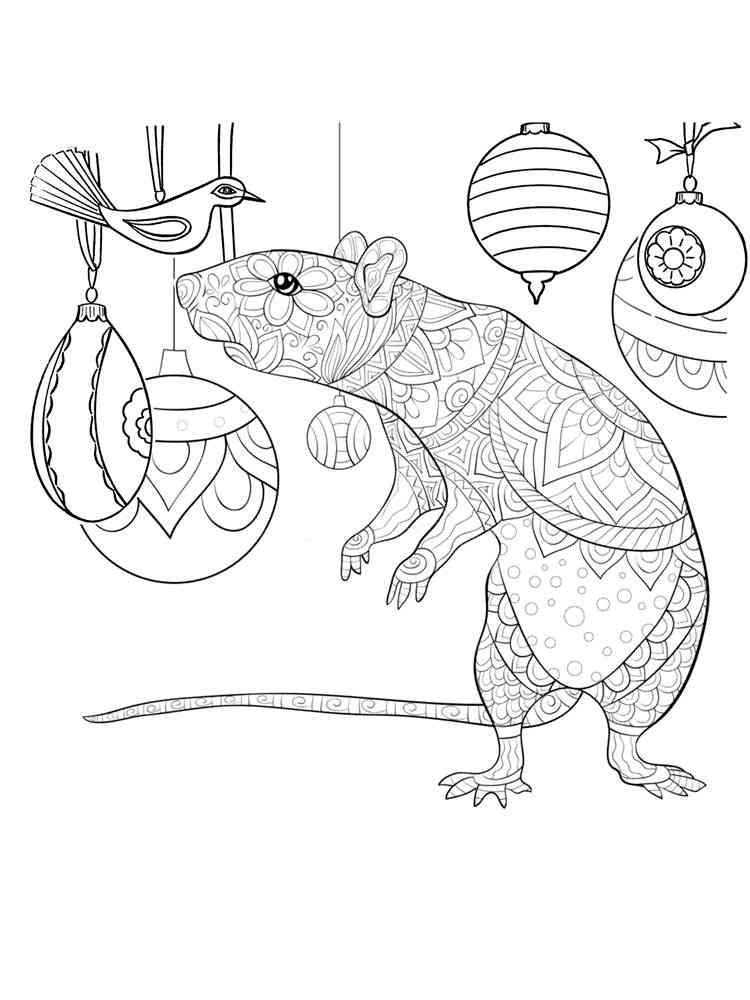 Раскраски Крыса - распечатать в формате А4