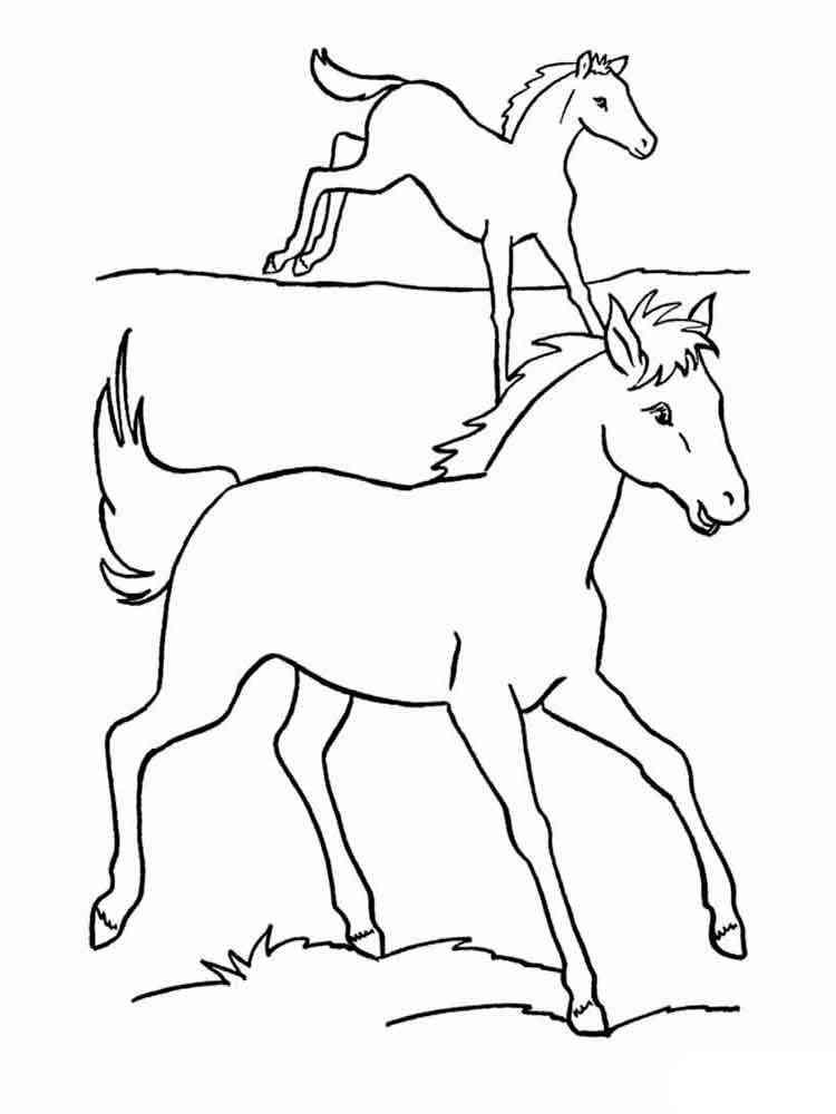 Водная лошадь раскраска гидроизоляция фундаментов maxseal flex