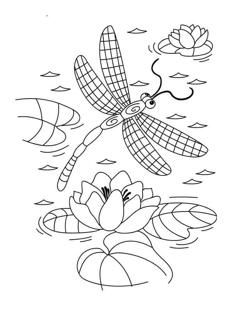 Раскраска Стрекоза - распечатать в формате А4