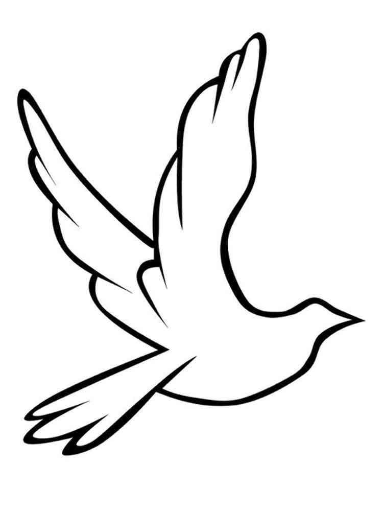 Раскраска голубей