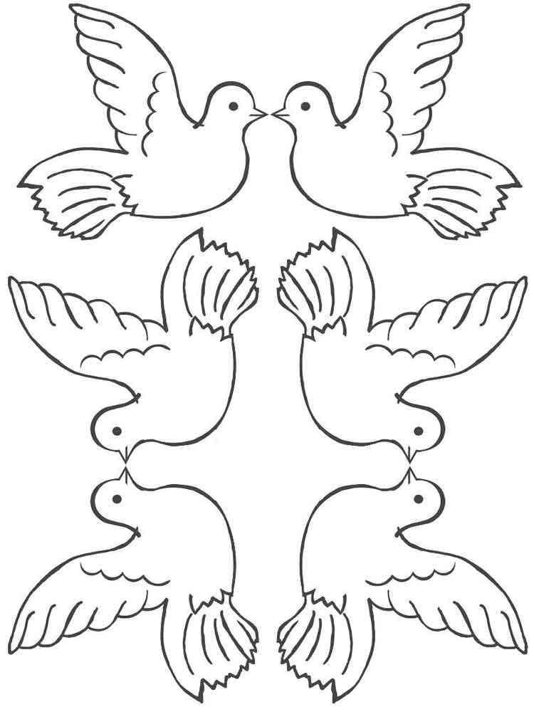 Аппликация голубь с шаблоном