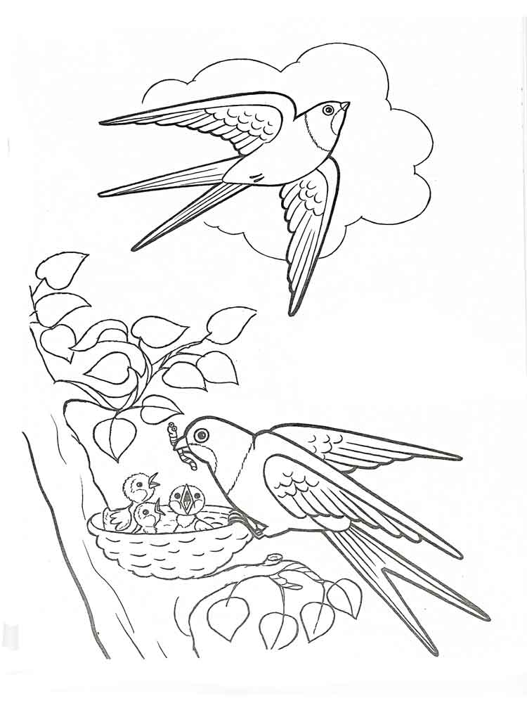 Раскраски перелетные птицы для детей - 6