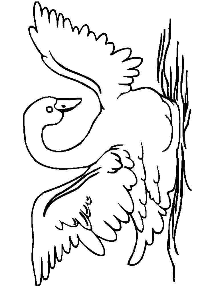 Раскраска лебедь - 6