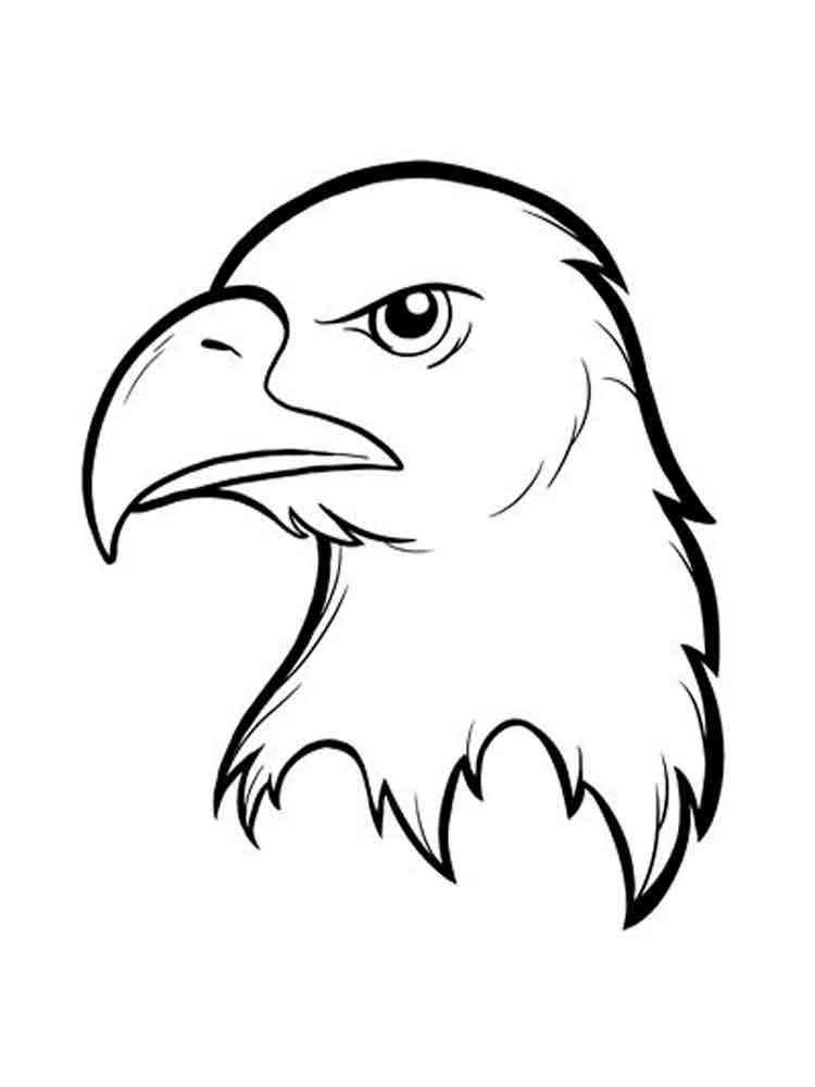 раскраска орел скачать и распечатать раскраски орел