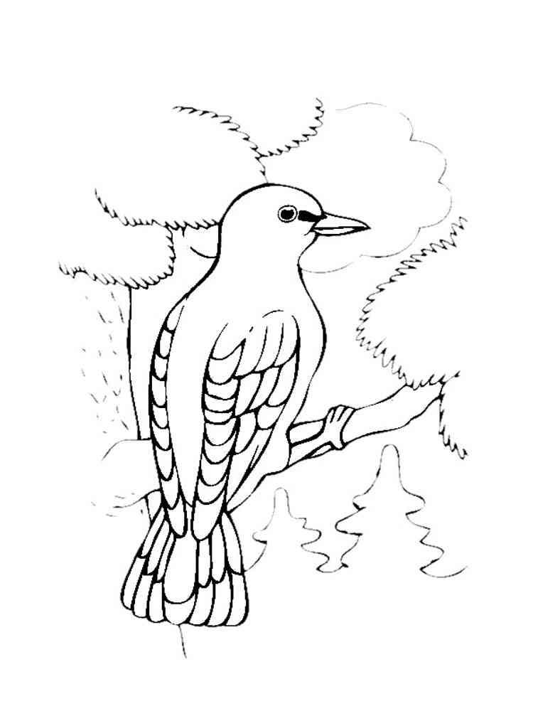 Раскраски Перелетные птицы - распечатать в формате А4