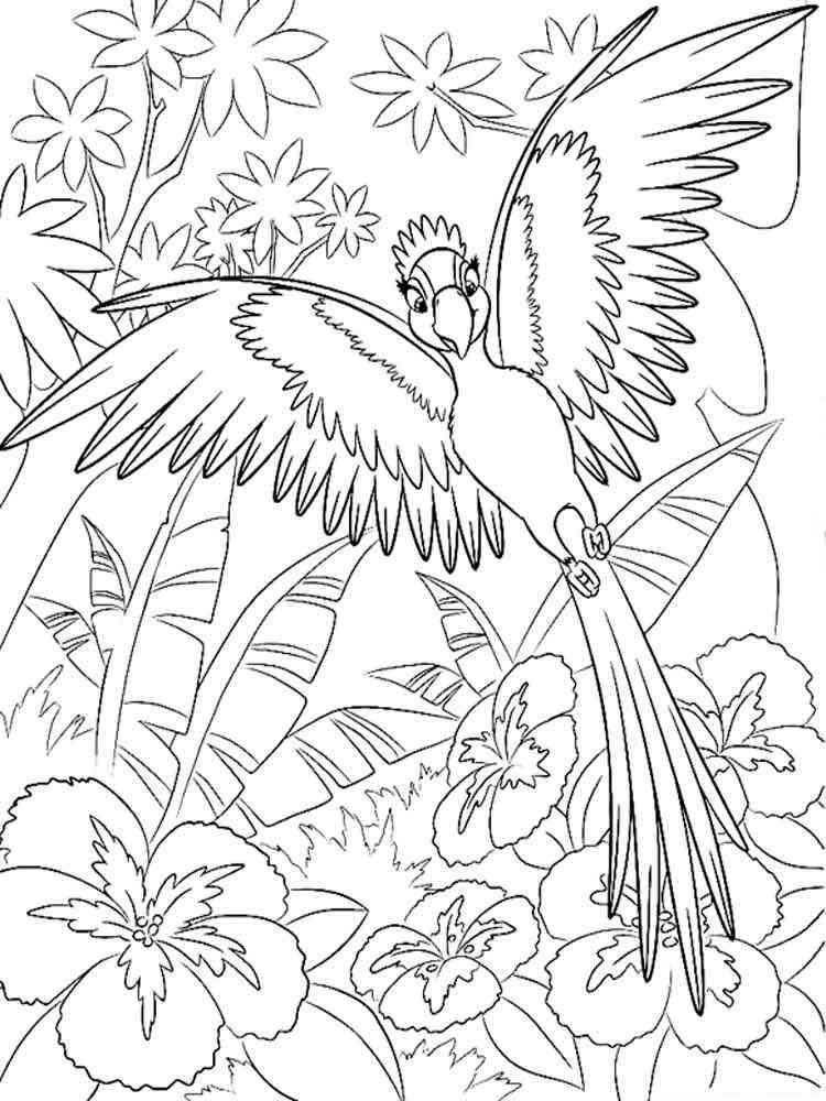 Раскраска Попугай Ара. Скачать и распечатать раскраски ... Картинка Журавль