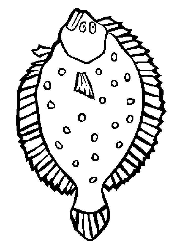 Раскраска рыба Камбала - распечатать в формате А4
