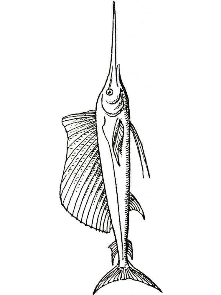 раскраска картинка рыба