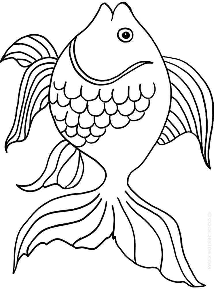 Раскраски Золотая рыбка - распечатать в формате А4