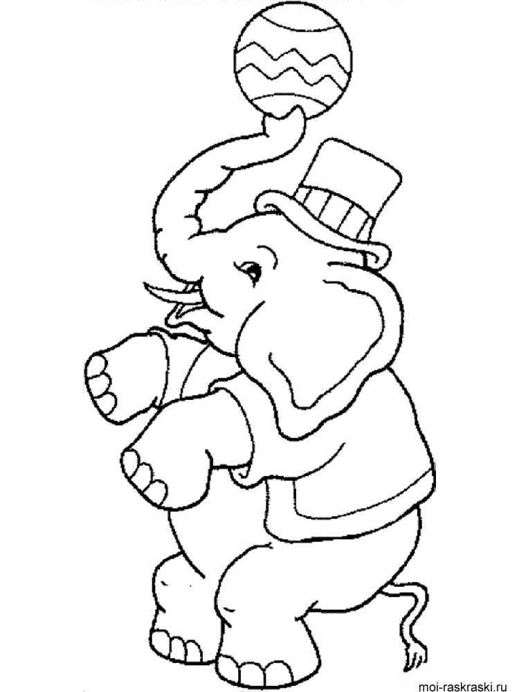 раскраски слон скачать и распечатать раскраски слон