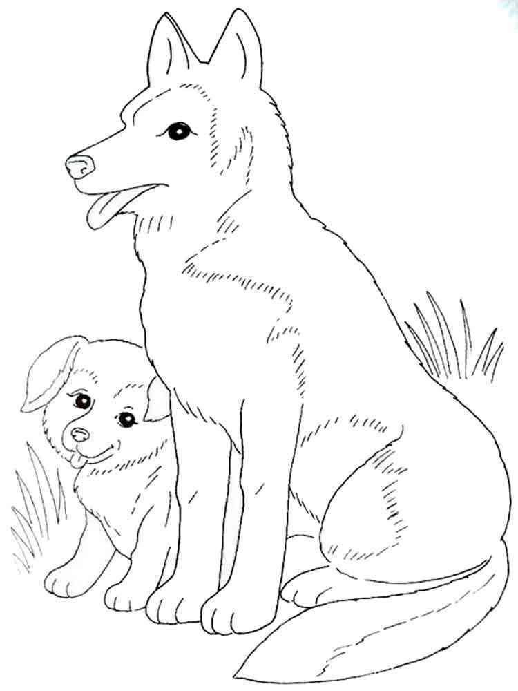 Раскраски собачки - 7
