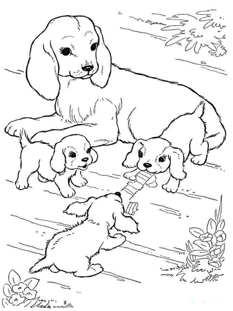 Раскраски с щенками распечатать бесплатно