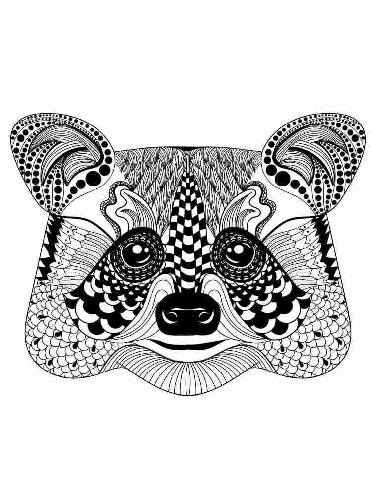 Раскраски Енот Антистресс - распечатать в формате А4