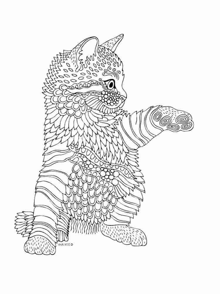 Раскраски Кошек Антистресс - распечатать в формате А4