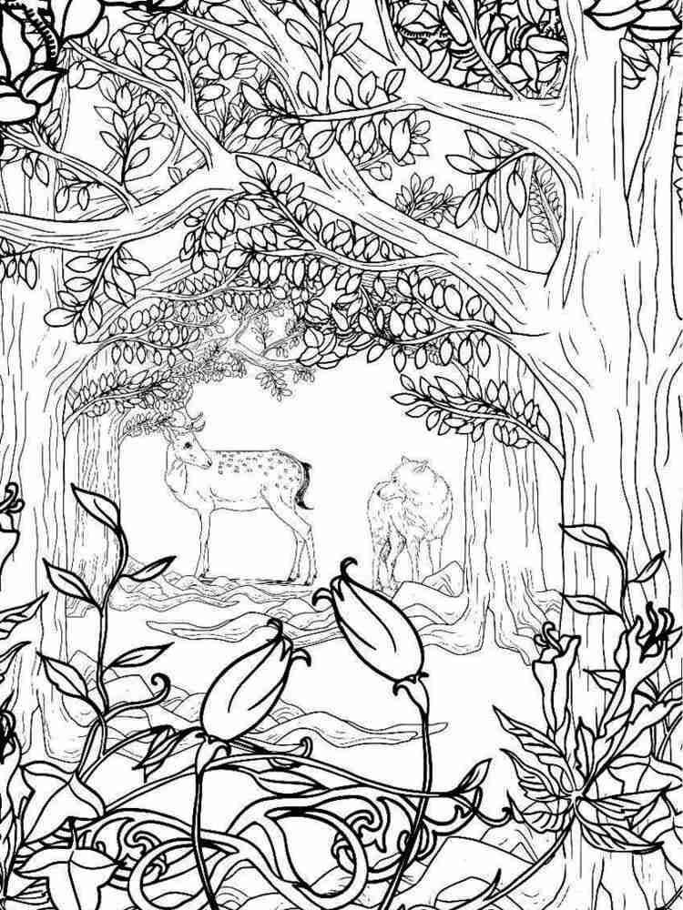 Раскраски Лес Антистресс - распечатать в формате А4