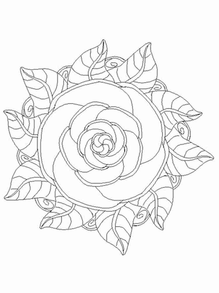 Раскраски Мандала Цветы для взрослых Скачать и