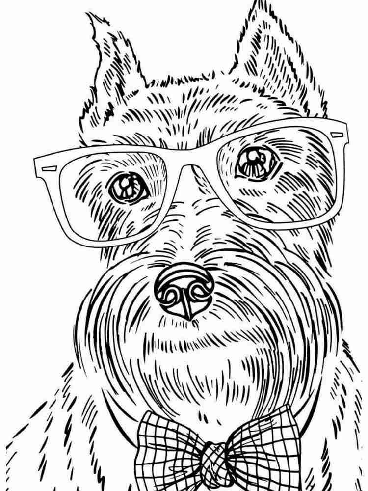 Раскраски Собаки Антистресс - распечатать в формате А4