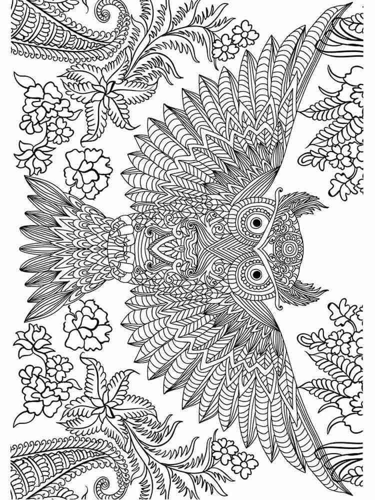 Раскраски Сова Антистресс - распечатать в формате А4