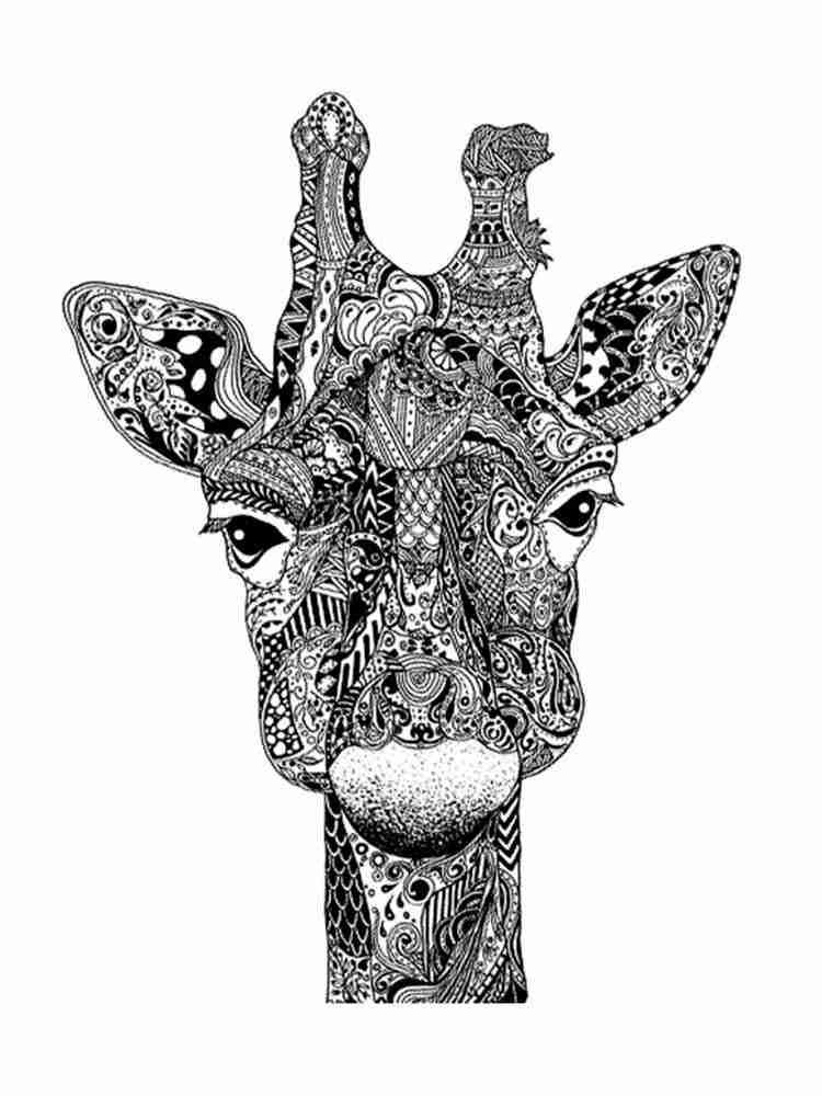 Раскраски Жираф Антистресс - распечатать в формате А4