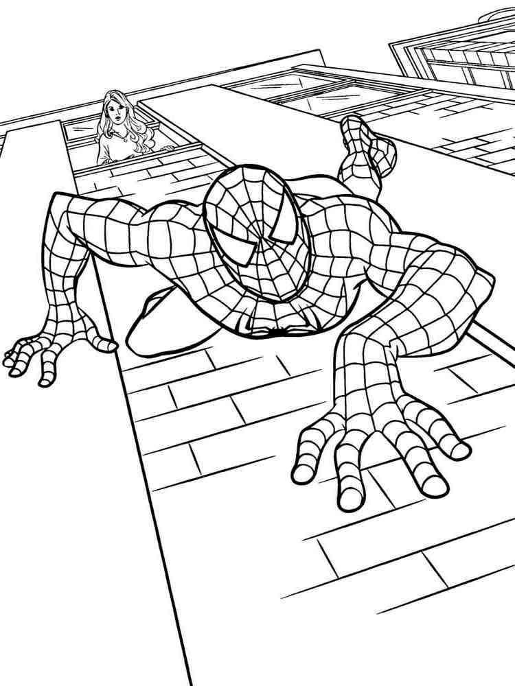 Раскраска паука играть