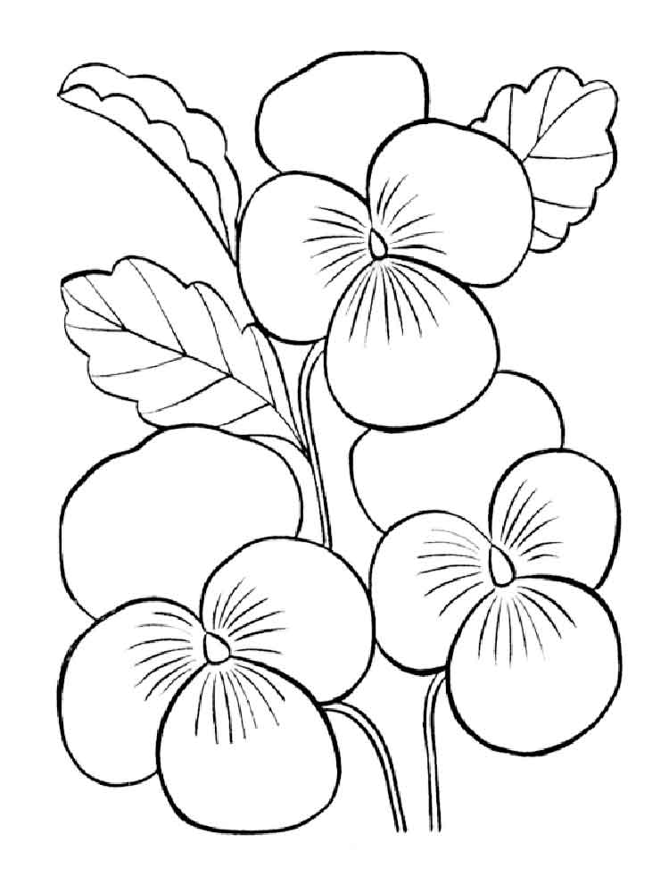 Rainforest plants and flowers coloring pages