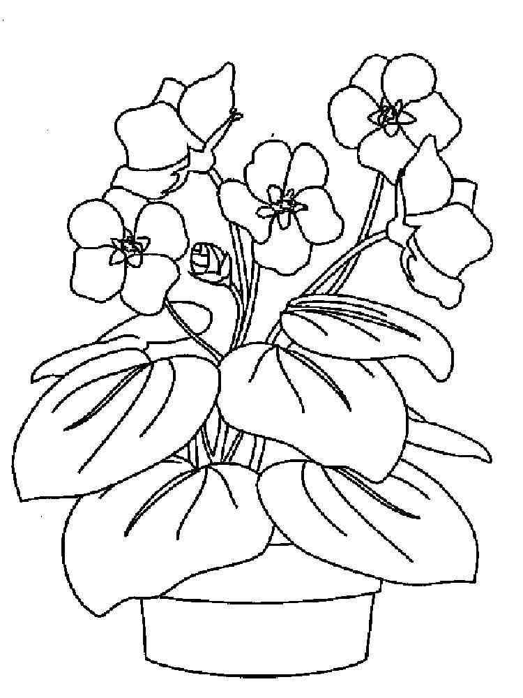 Картинка раскраска цветик семицветик для детей