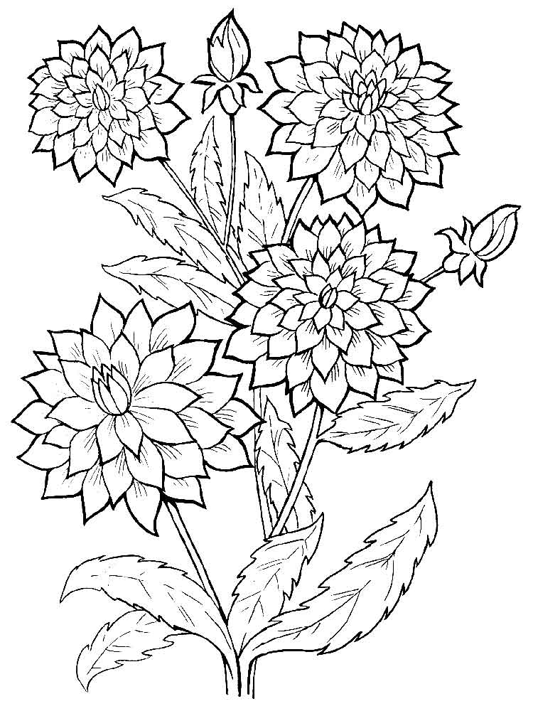 Скачать фото на телефон букетов цветов 8
