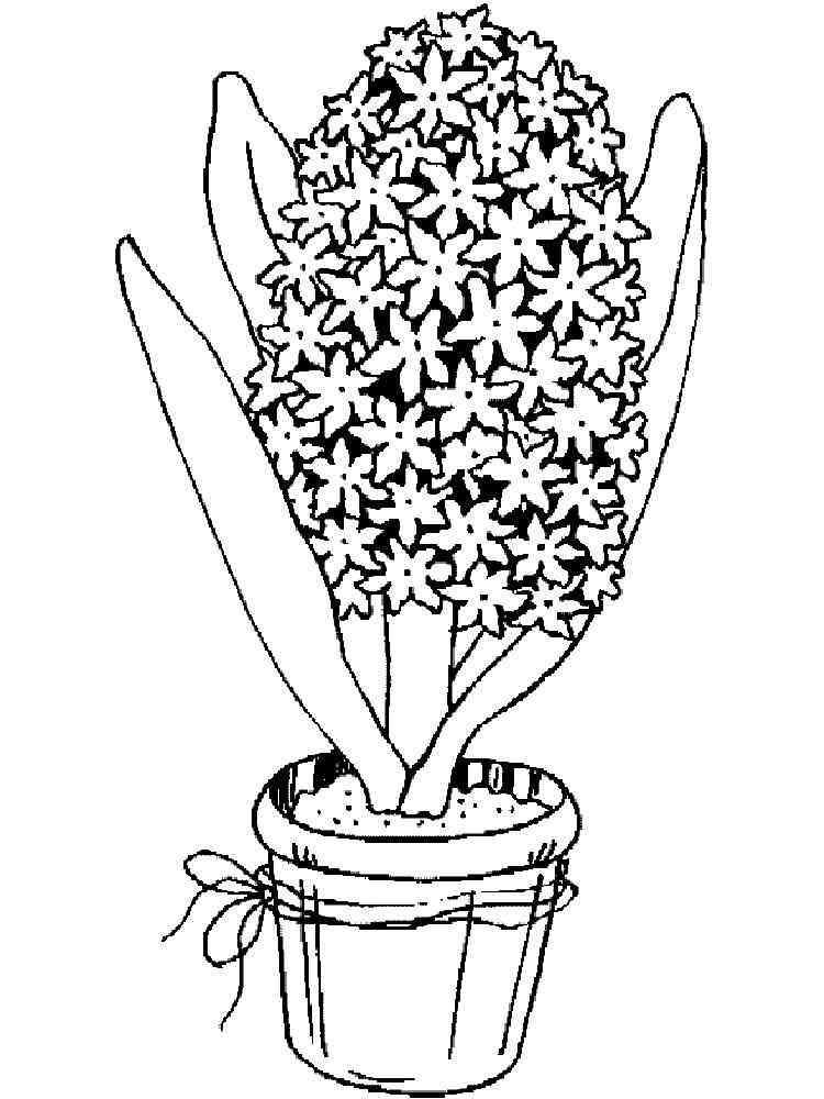 картинка цветочный горшок с растением раскраска