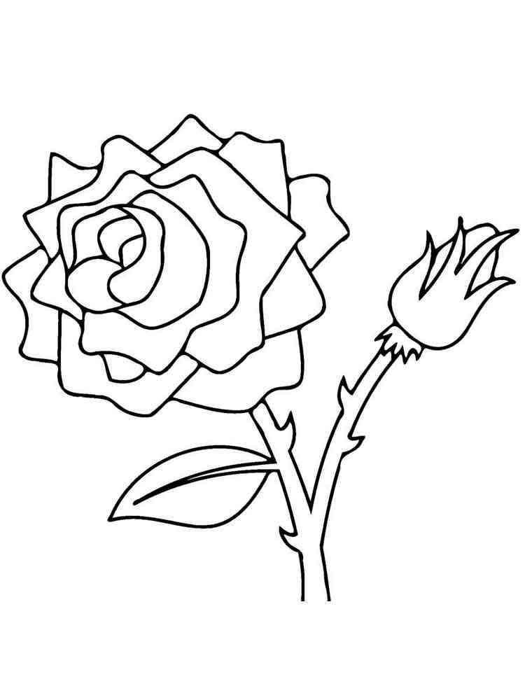 Раскраска детям цветок