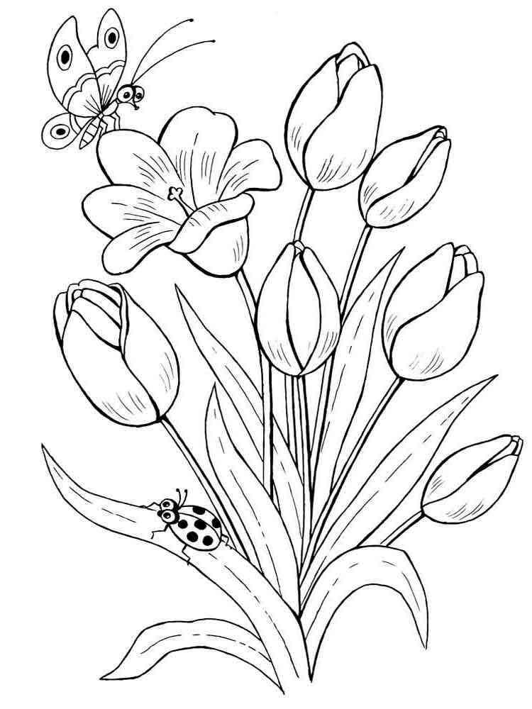 Распечатать цветы