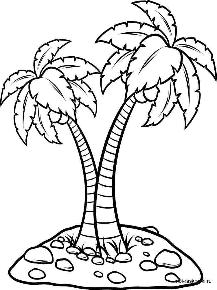 Раскраска Пальма Скачать и распечатать раскраски Пальма