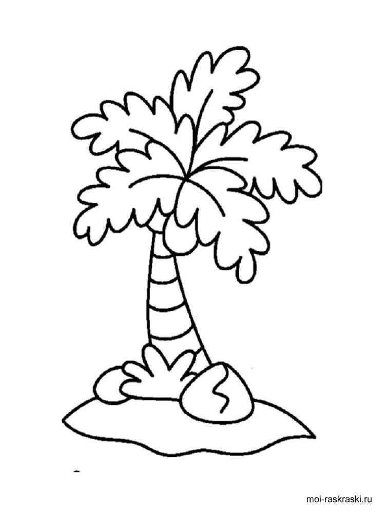 Пальма картинка раскраска