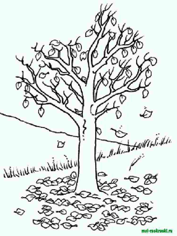 Картинки деревья для раскраски
