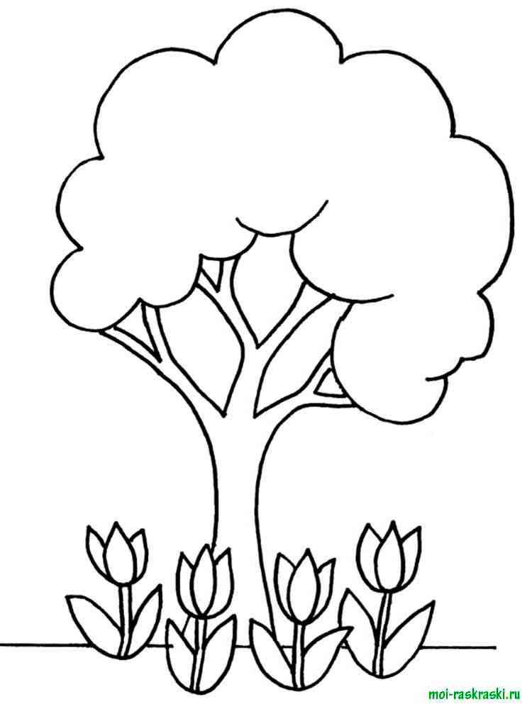 Раскраски для детей деревья цветы