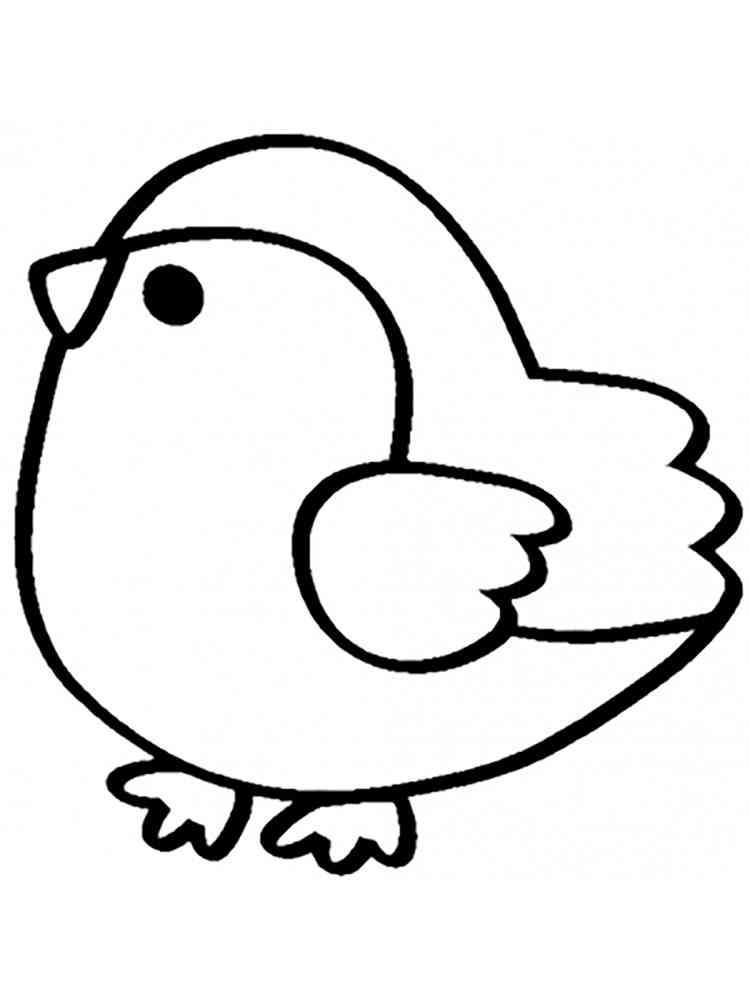 картинки птичек для раскраски пошаговыми фото