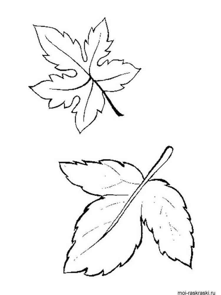 Раскраски деревьев без листьев