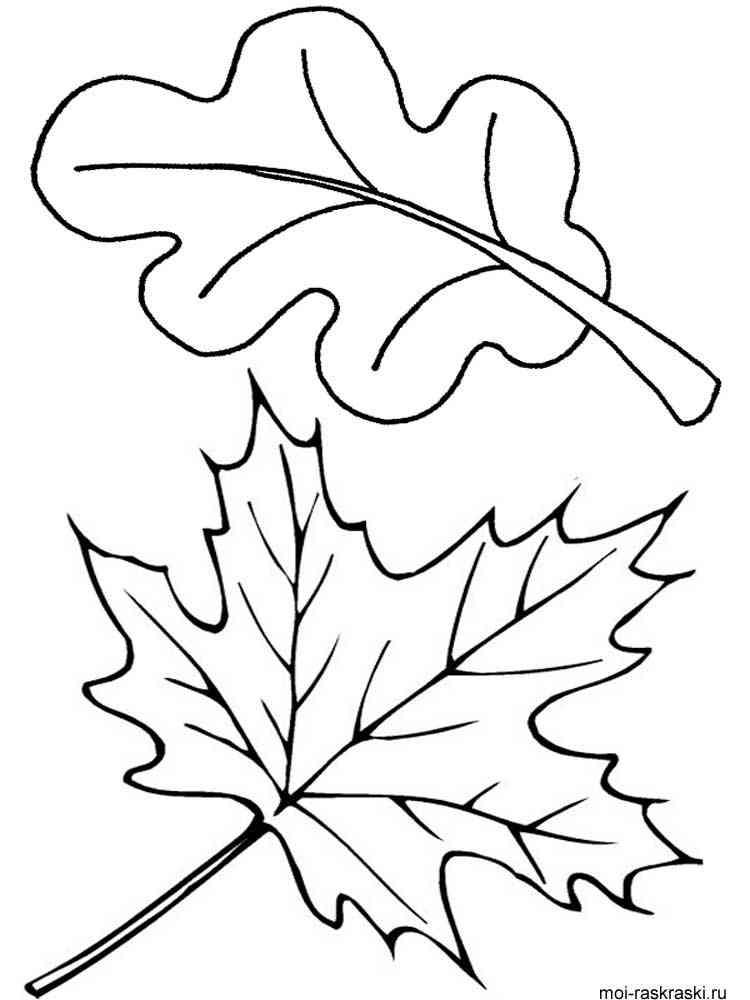 блок холодильник картинка раскраска осенние листья поводу
