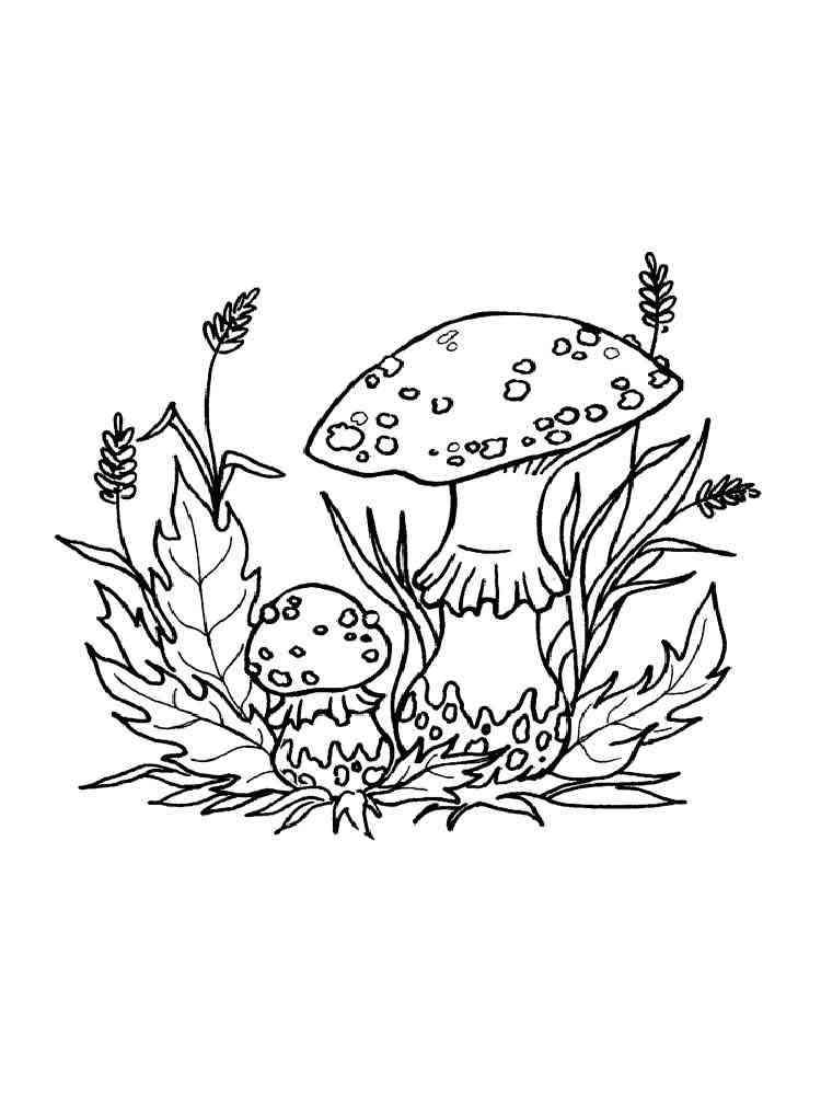 тройняшки раскраска грибы мухоморы работе вашей