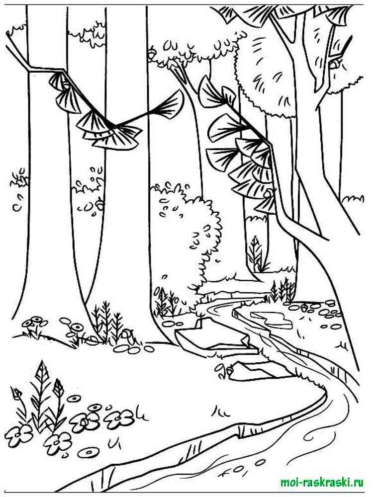 Картинки для раскрашивания на тему природа