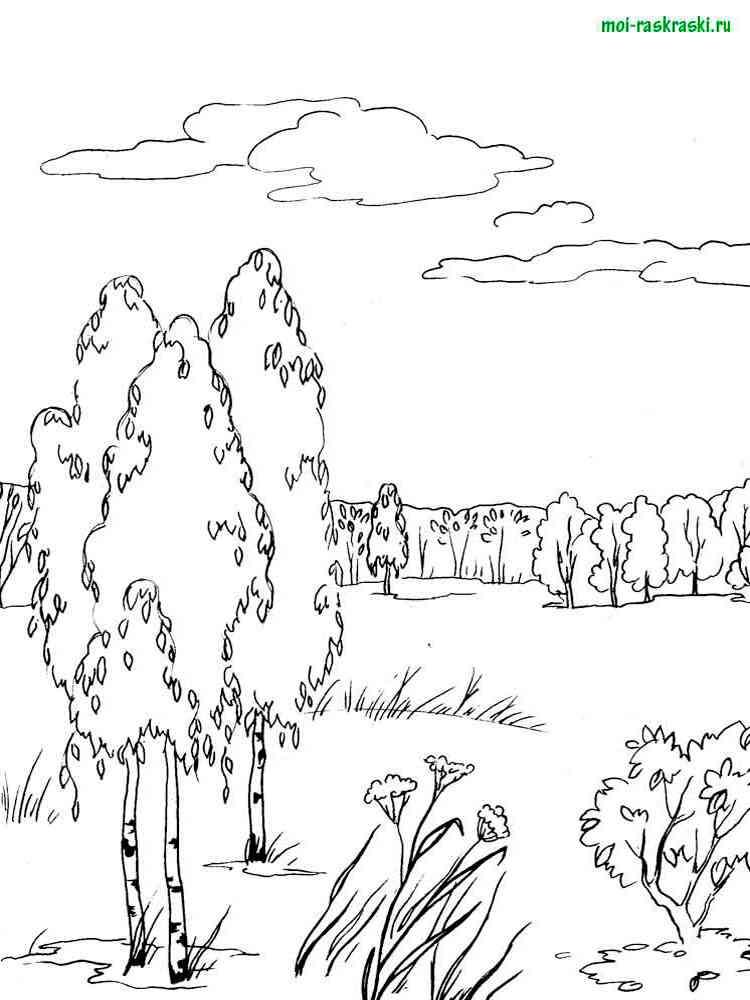 Раскраска для детей болото