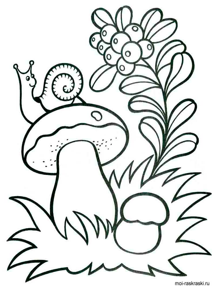 Раскраски грибы для детей - 5
