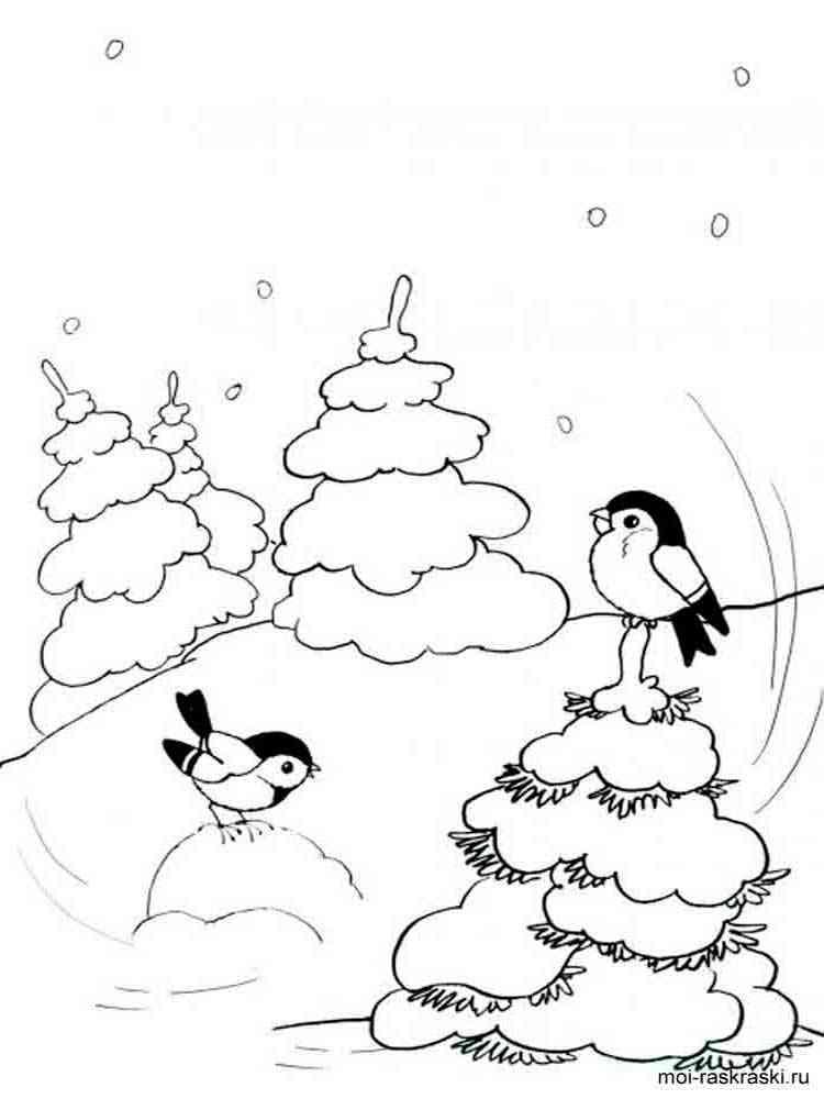 Зима рисунки раскраски