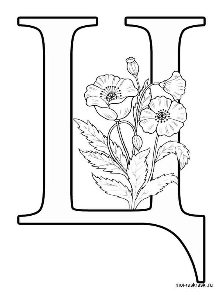 Раскраска Буква Ц - распечатать в формате А4