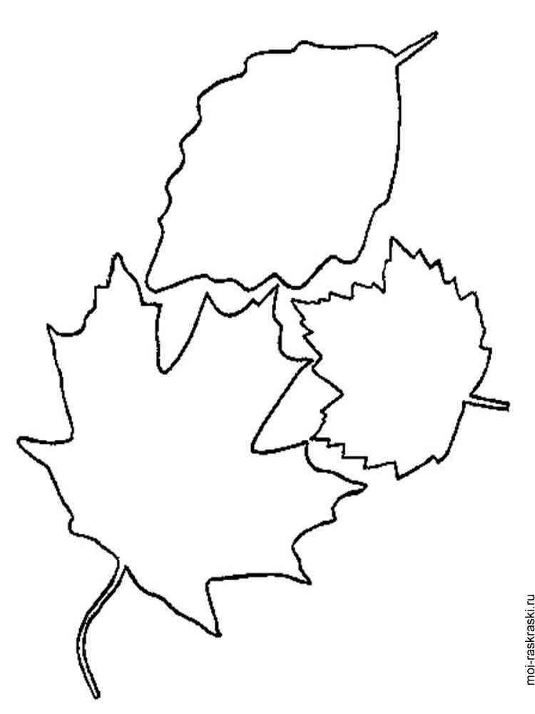 раскраска листья деревьев скачать и распечатать раскраски